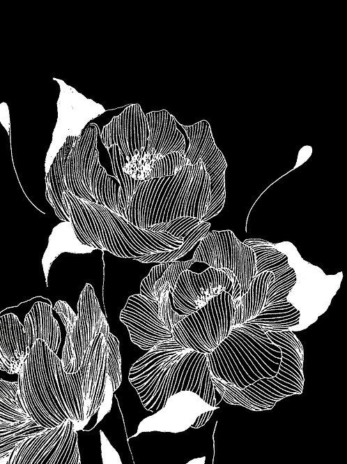 Jardin d'hiver, Tirage Noir