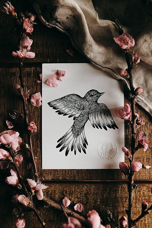 "Carte postale "" Oiseau"""