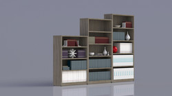 BOOKCASES_WC