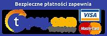 tpay logo.png