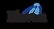 Elavon-Logo-300x160.png