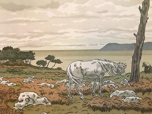 Henri Riviere La baie aspects de la nature