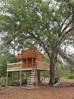 Tavern Treehouse