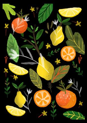 fructe.png
