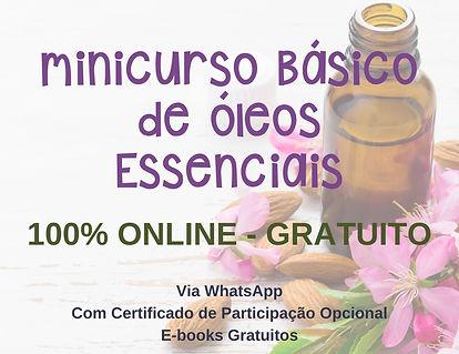 minicurso_basico_2_edited.jpg