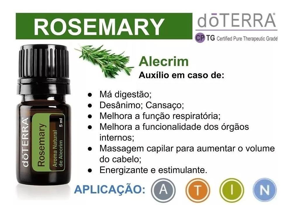 oleo essencial de alecrim, óleo essencial, óleo essencial doterra, óleo essencial rosemary, rosemary, alecrim, usos do alecrim, como usar óleo essencial, como usar alecrim, couro cabeludo, dicas de saúde
