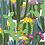 Thumbnail: Quadro Digital Cactos II