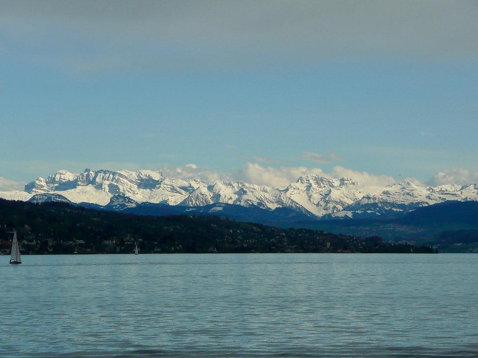 Zurich Alps 3.jpg