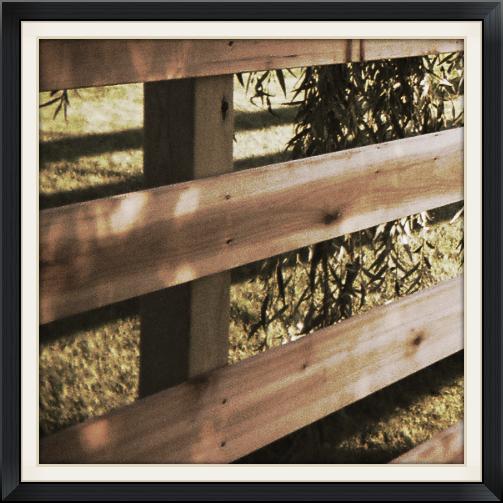 Horse Rail Fences