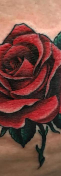 roseclr_edited.jpg