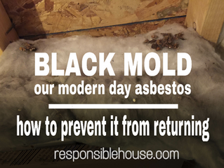 Mold...our modern day asbestos