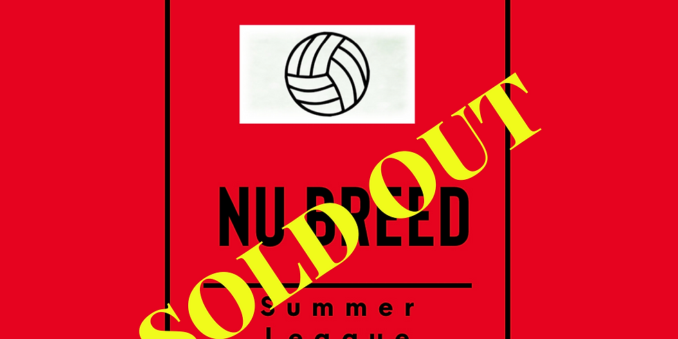 Summer Youth Volleyball League