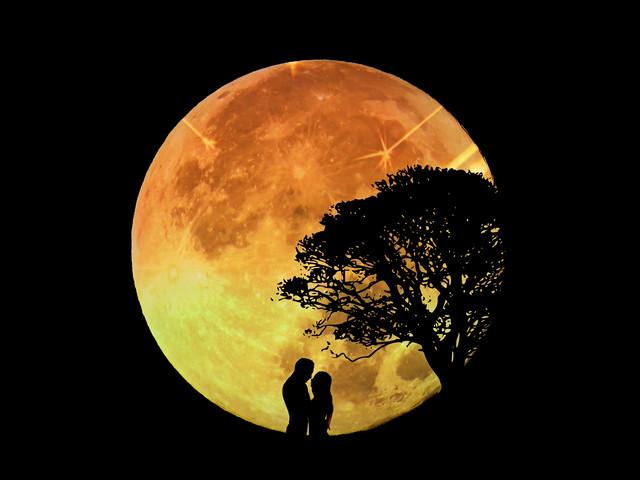 lovers-1302670_1920.jpg