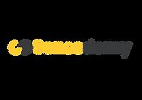 SD Long Logo.png