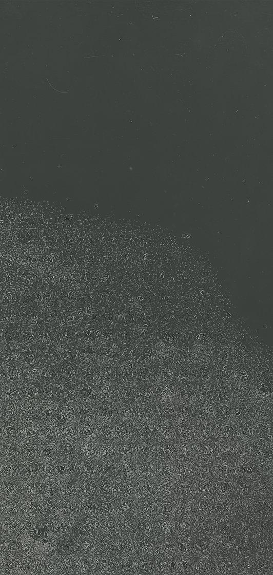 003_photogram_fog%2520copy%2520copycopy_edited_edited.jpg