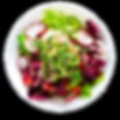 radish dish.png