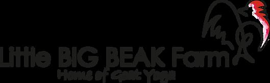 Logo_LBBF_vollständig_2017_Wasserfarbe.p