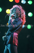 Robert Plant 2.jpg