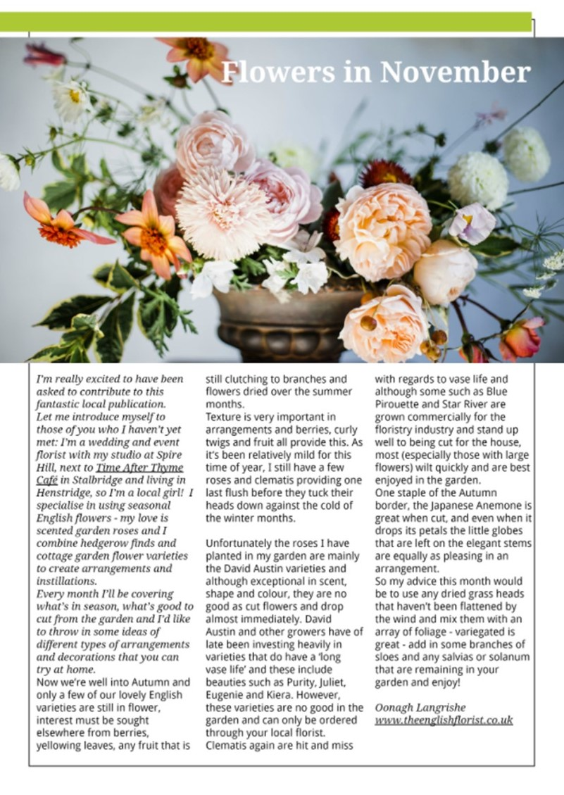 Blackmore Vale Magazine