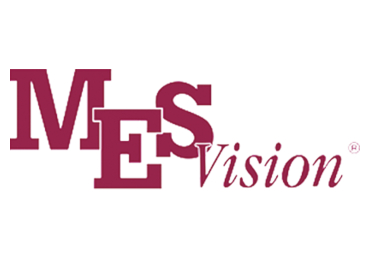 Medical Eye Services Vision