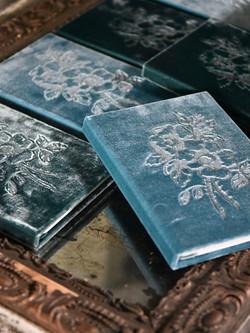 Velvet Books
