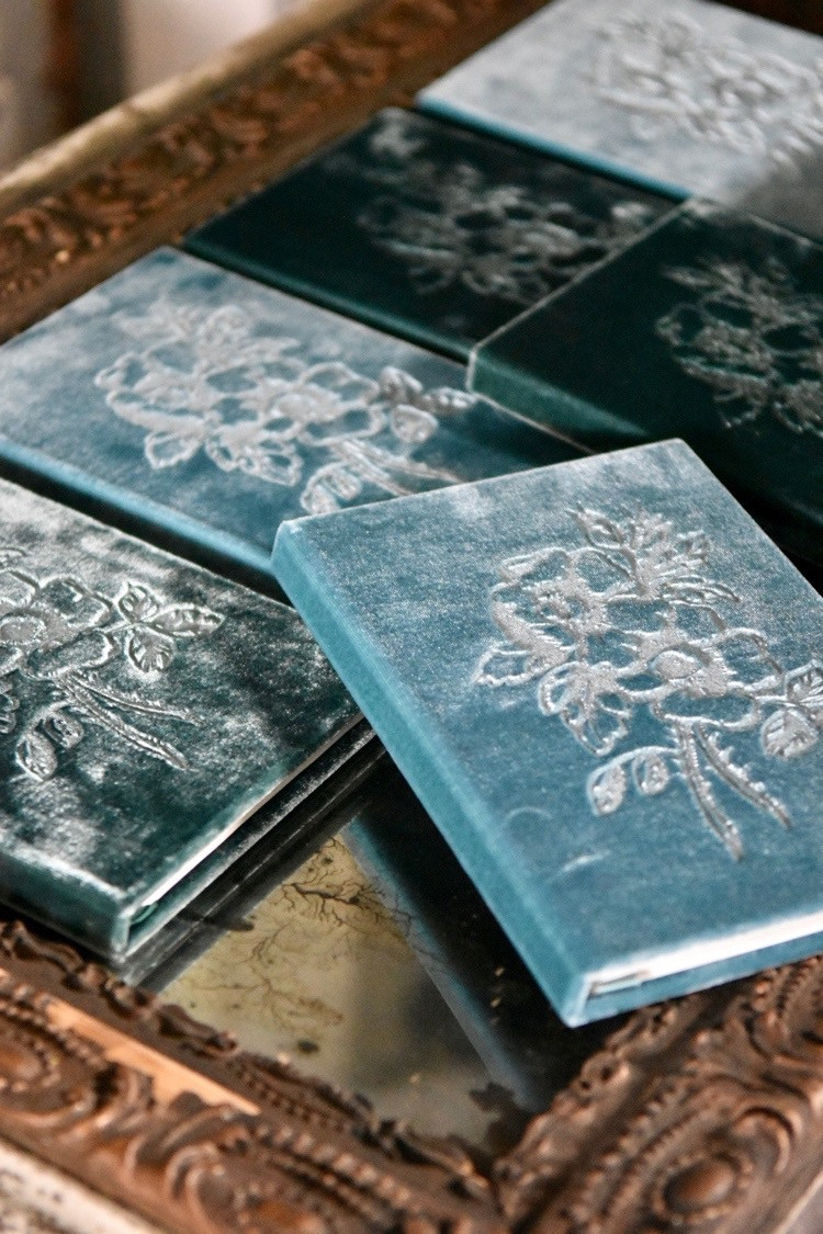 Jennifer Lanne silk velvet books rose embossed for Decorum