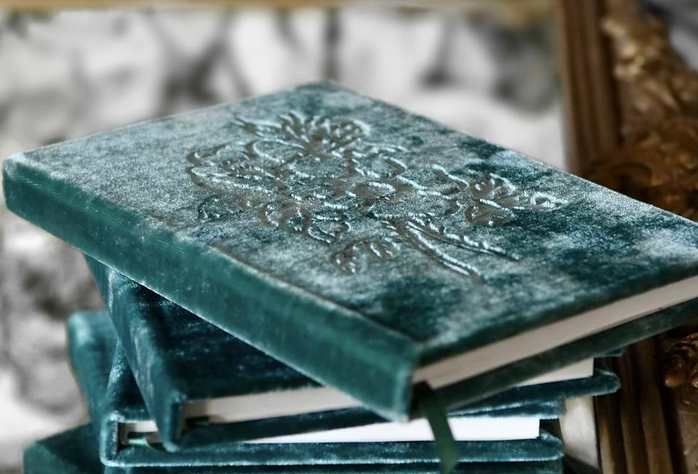 Edwardian Pine Velvet Book
