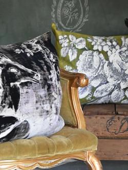 Velveteen Pillows