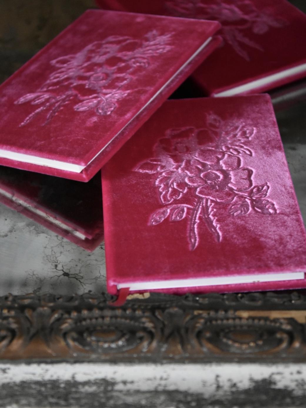 jennifer lanne silk velvet books