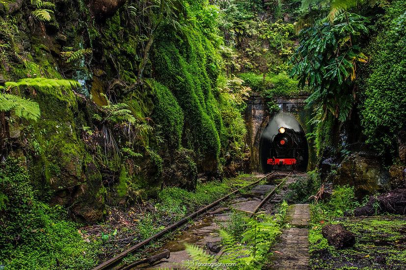 The Abandoned Station