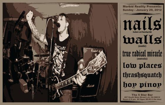 NAILS Live Concert Poster