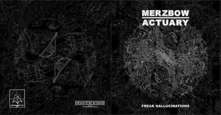 Merbow / Actuary LP Design