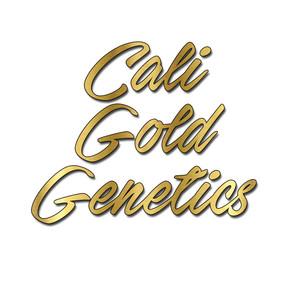 Cali Gold Genetics Logo