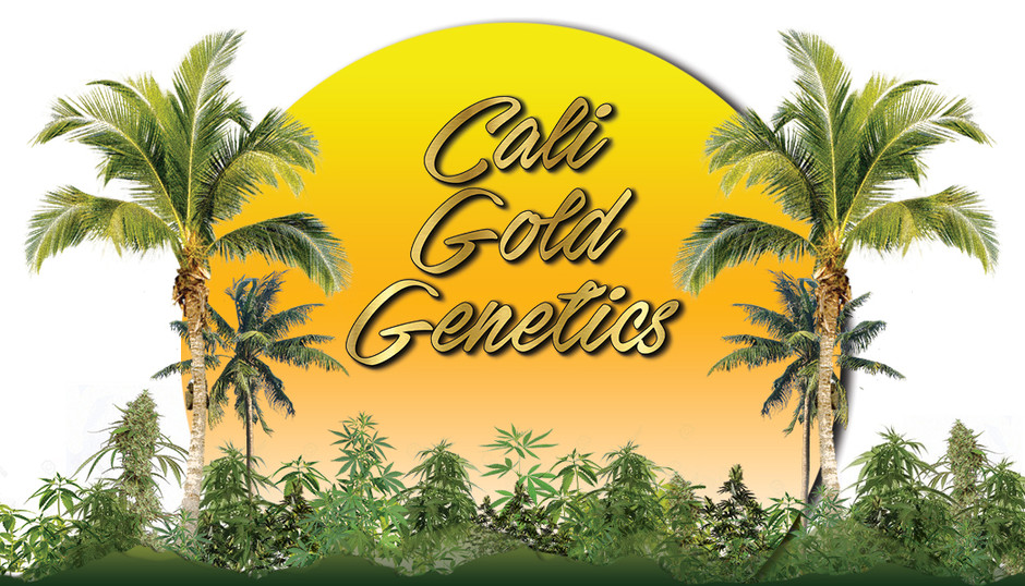 Cali Gold Genetics Business Card.