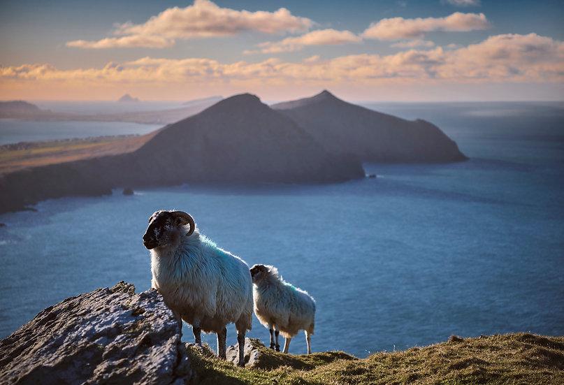 West Kerry - Dingle Peninsula - Print