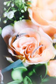Katie's rings