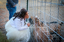 Bride with her goats