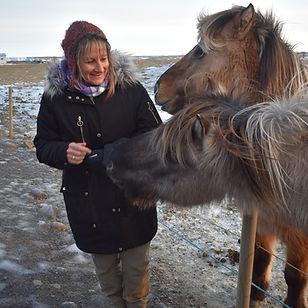 Deb Iceland Horses 1.jpg