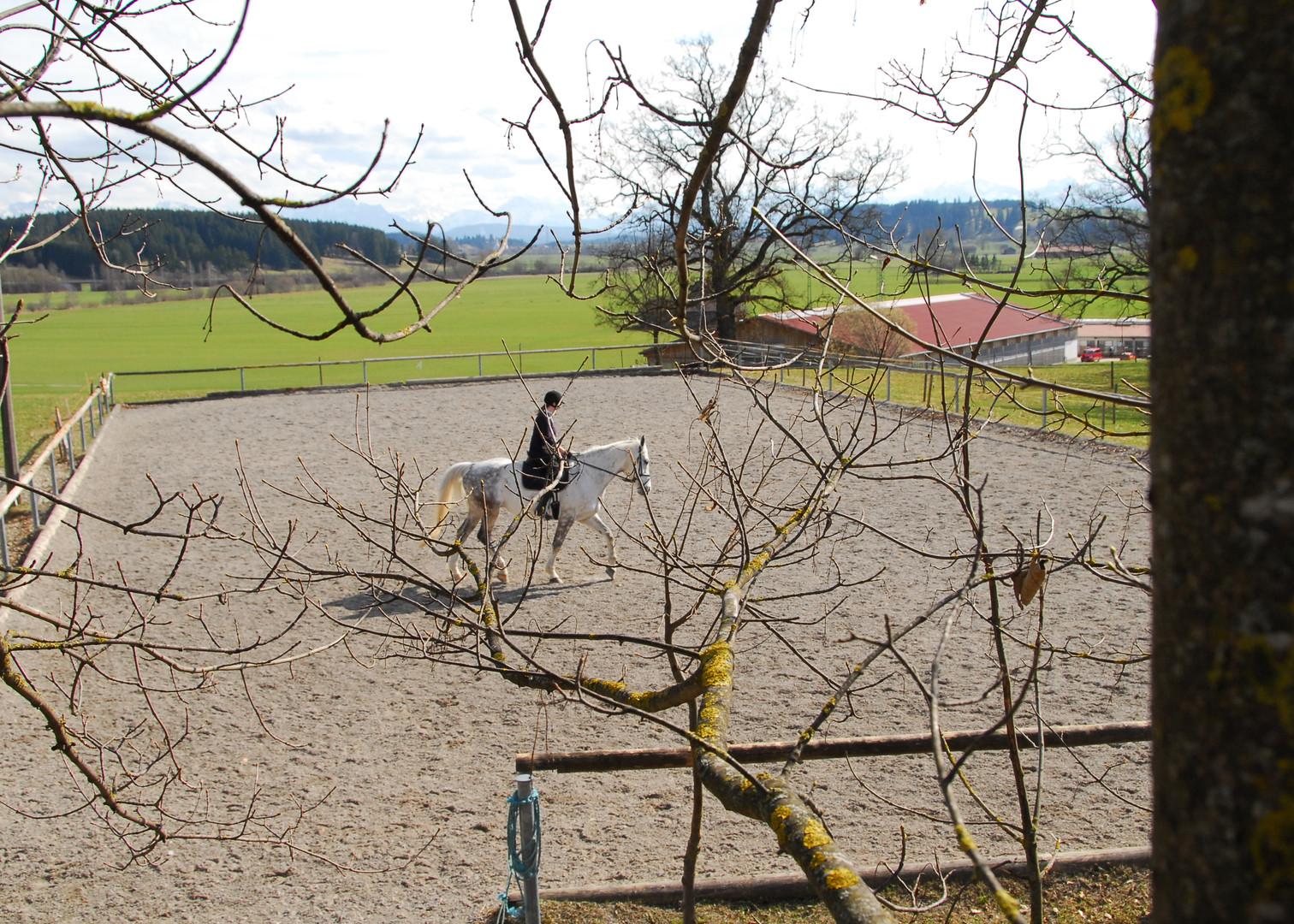 Der Sandplatz