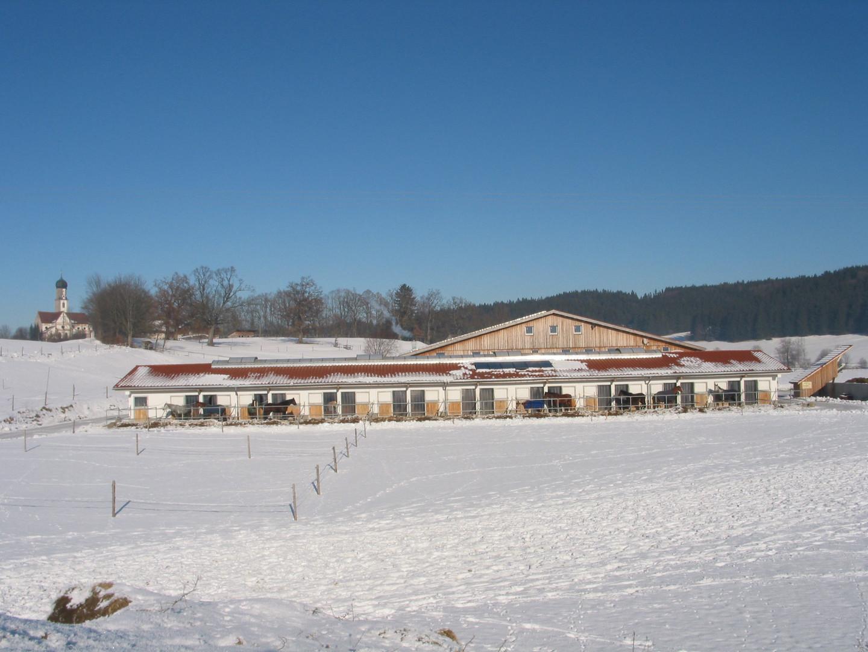 Pferdeboxen im Winter
