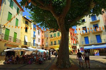 Catalans square.jpg