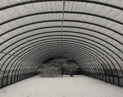 Une volière de vol sous la neige
