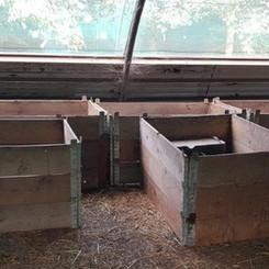 Hedgehog crates