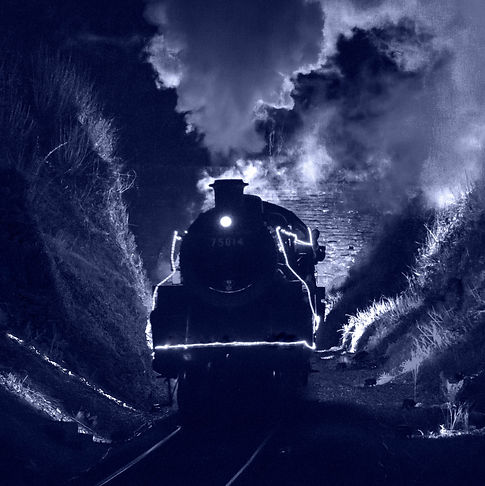 Train of Lights Datmouth Steam Railway