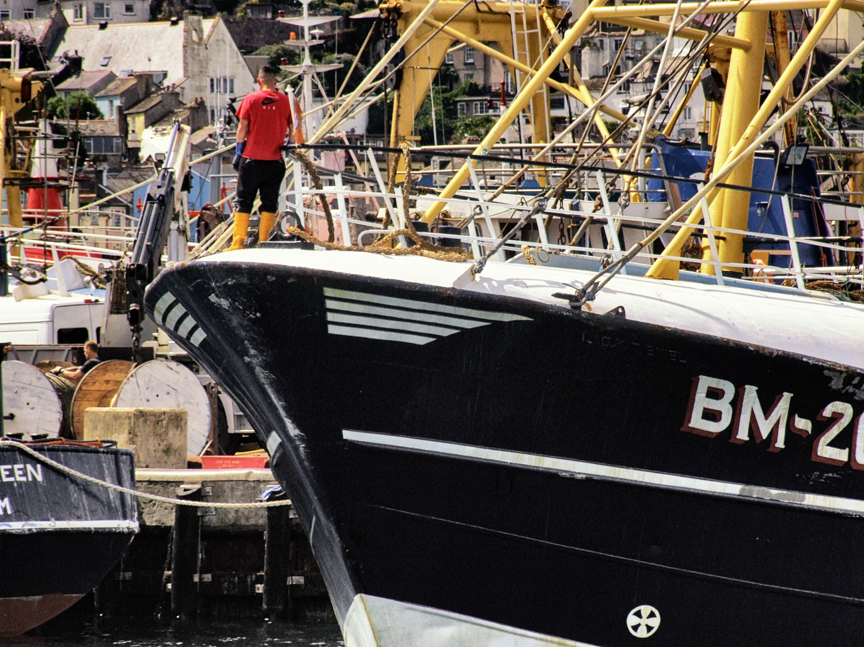 Famous Brixham trawlers