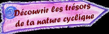 cyclique.png
