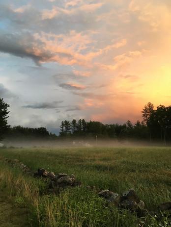 misty field.JPG