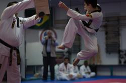 Jump Spin Kick