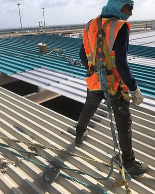 caargo roof panels.jpg
