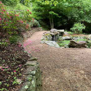 A few landscaping projects this month